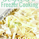 Styles of Freezer Cooking