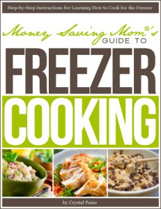 freezer-cooking-cover-small1-231x300