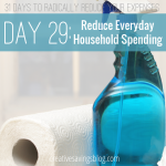 Day 29: Reduce Everyday Household Spending