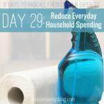 Day 29: Reduce Everyday Household Spending