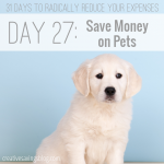 Cut pet-related costs as much as possible while still providing top-notch love and care -- these 6 ideas will give you a great start!