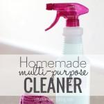 Homemade Multi-Purpose Cleaner