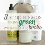 3 Simple Steps to Go Green Without Going Broke