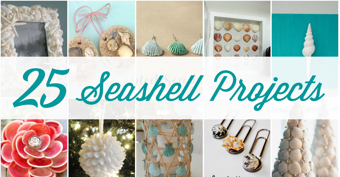 25 stunning seashell projects beautiful diy seashell crafts - Diy projects with seashells personalize your home ...