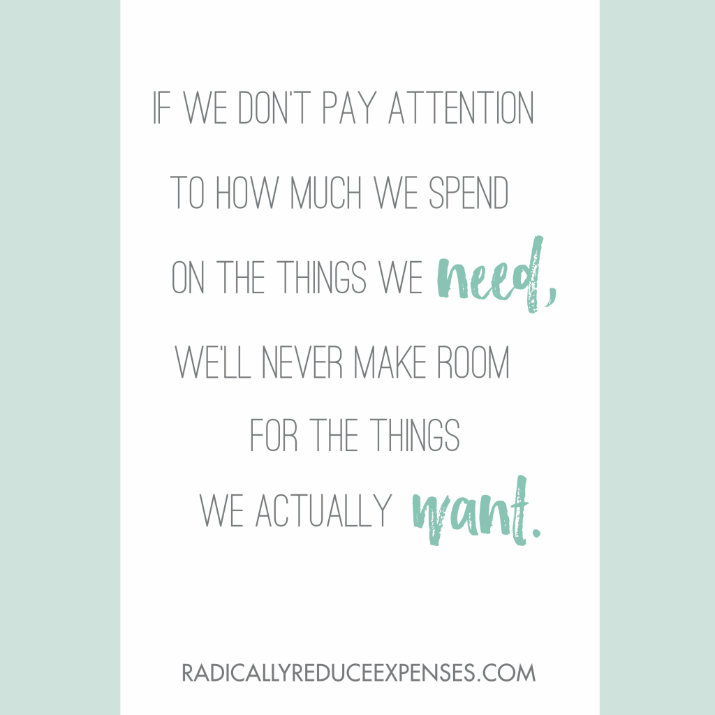 Such a powerful quote from the book, 31 Days to Radically Reduce Your Expenses!