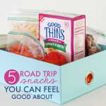 5 Road Trip Snacks You Can Feel Good About