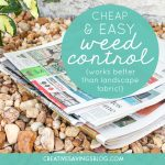 Cheap & Easy Weed Control