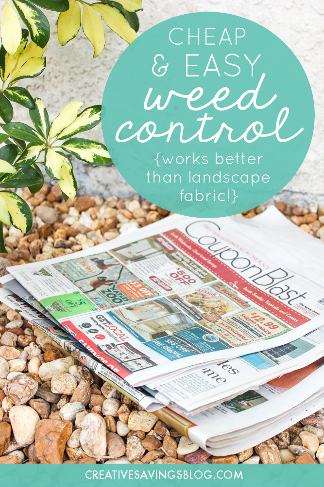 I had no idea you could even do this!! Wait until you see the photo that compares her newspaper method with the landscape fabric. UNREAL. I have a big gardening project this weekend, and now I know exactly how to prevent all those weeds from coming back! #weedcontrol #controllingweeds #lawnmaintenance #cheapeasylawncare