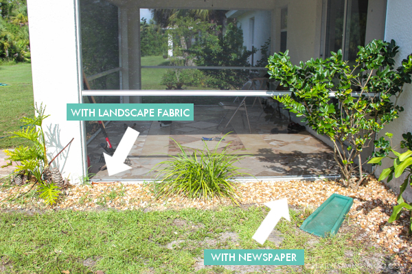 Easy Weed Control