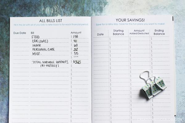 budget-notebook-5